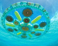Port City Party