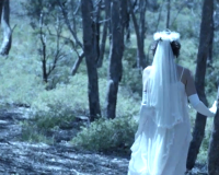 Karnivool's Dying Bride