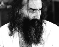 WARREN ELLIS From Bad Seeds to Bad Girl