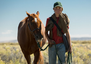 LEAN ON PETE gets 7.5/10 Horsin' around