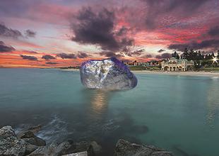 Zhan Wang's Floating Rock