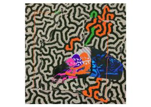 ANIMAL COLLECTIVE Tangerine Reef gets 5.5/10