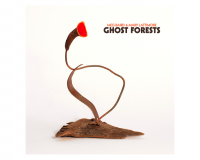 MEG BAIRD & MARY LATTIMORE Ghost Forests gets 7.5/10