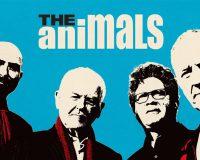 THE ANIMALS British invasion