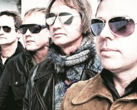 GIG: The Chevelles & The Volcanics