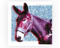 PROTOMARTYR Ultimate Success Today gets 8/10