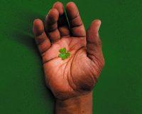 HAND IN HAND Celebrating Irish and Aboriginal love and friendship in WA